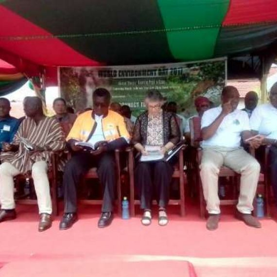 'We need collective efforts to preserve the environment' – Minister