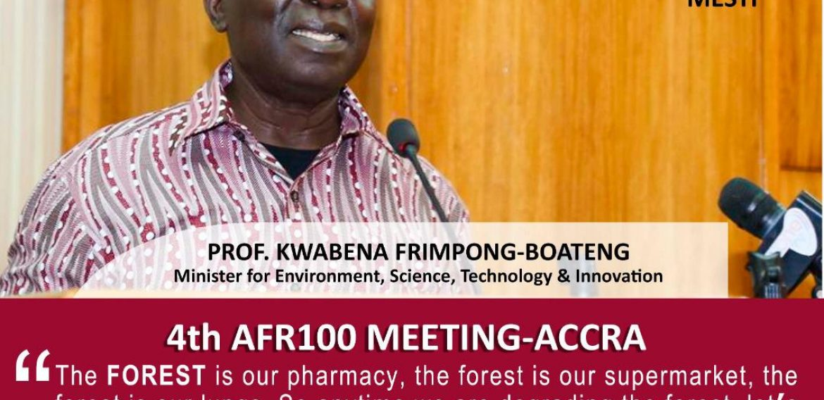 4th AFR100 Meeting- Accra